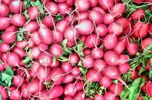 Low Carb Potato Options