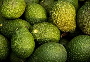 Carbs in Avocado