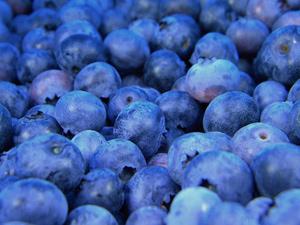 Keto Diet Blueberries