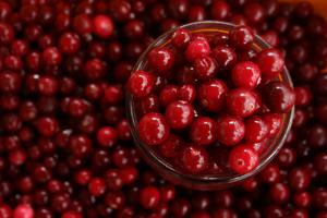 Cranberries Low Carb Diet