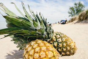 Carbs in Pineapples