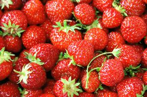 Low Carb Diet Strawberries